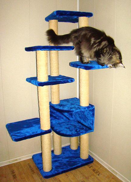 Как сделать уголок своей кошке 214